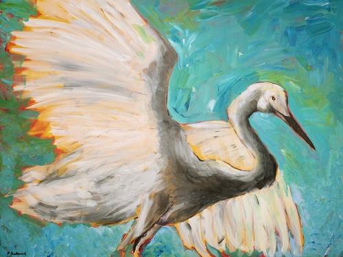 Sarasota Audubon Nature Center